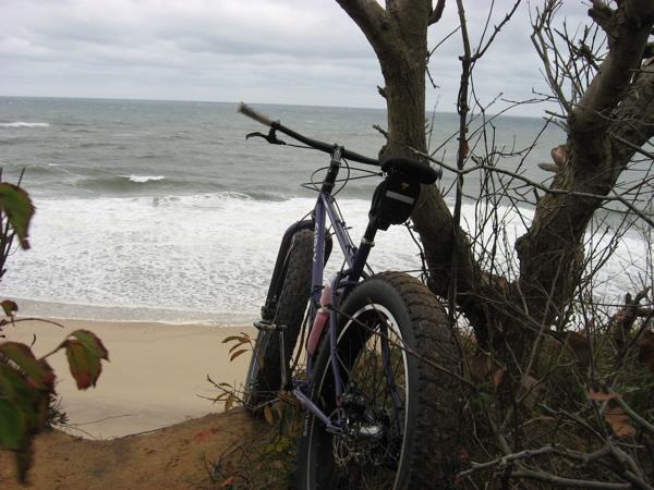 Beach/Sand riding picture thread.-img_2567.jpg