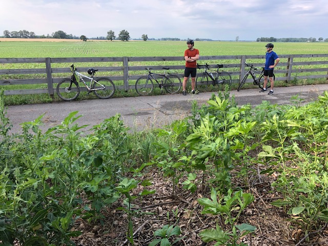 did you ride today?-img_2584.jpg
