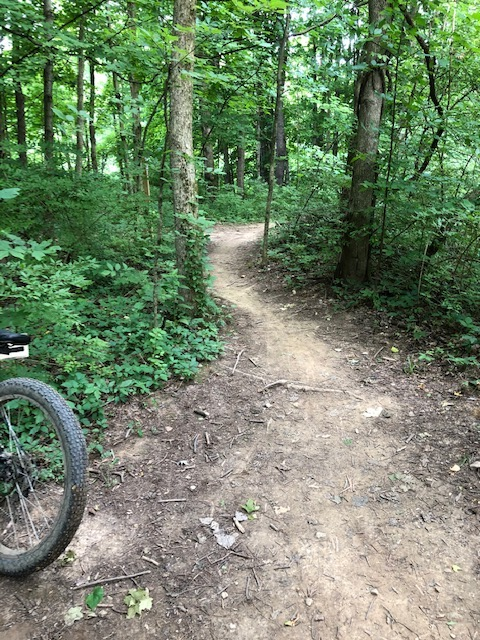 did you ride today?-img_2587.jpg