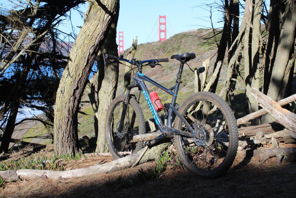 bike +  bridge pics-img_2588.jpg