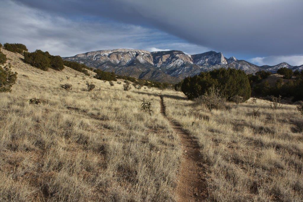 The NM Trail Pix Thread-img_2633.jpg