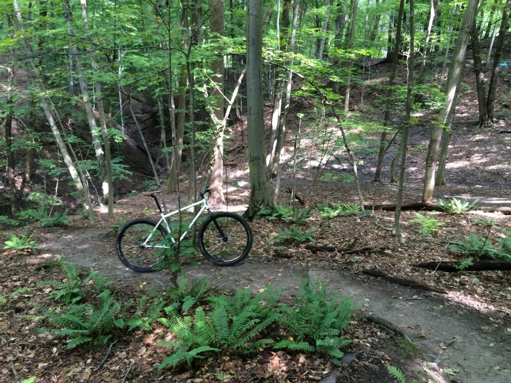 Share your LATEST SS ride...Pics and words-img_2649.jpg