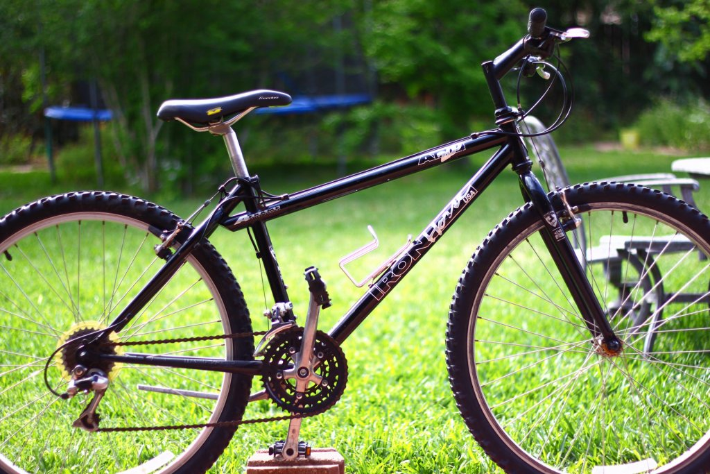 Iron Horse AT200-img_2672.jpg