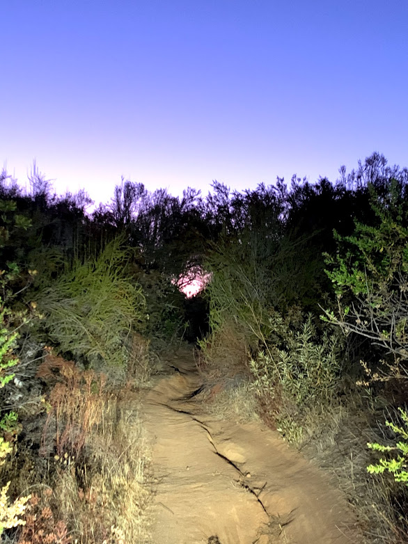 Night Riding Photos Thread-img_2721.jpg