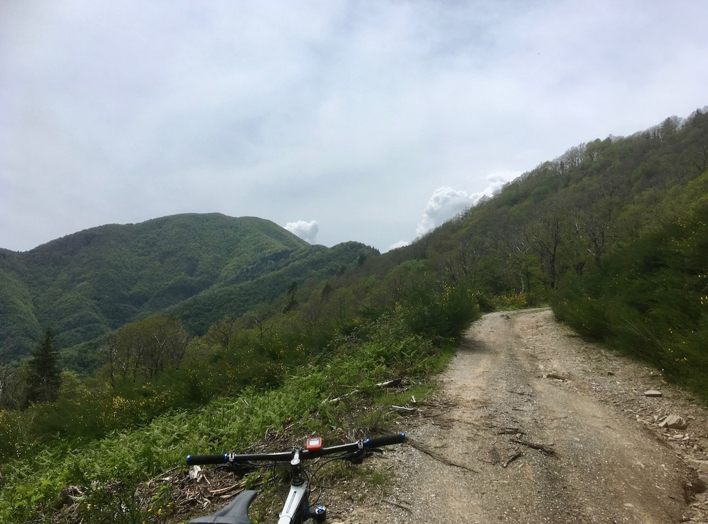 did you ride today?-img_2724.jpg
