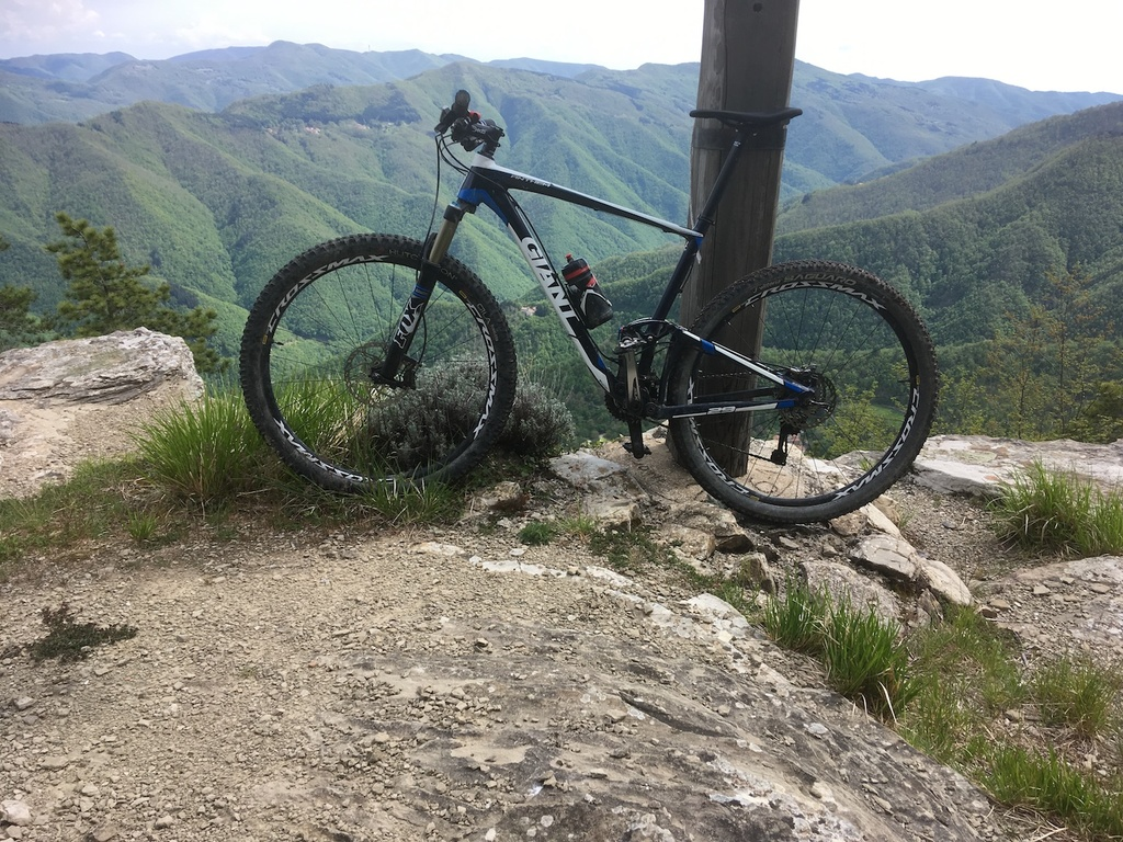 Post Pictures of your 29er-img_2733.jpg