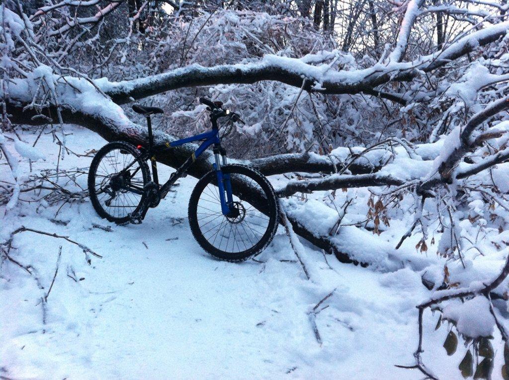 Totally Unofficial Snow Biking 2014/15 Thread-img_2759.jpg