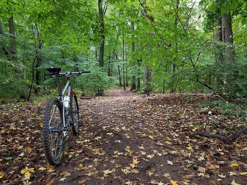 Trail Pics-img_2761.jpg