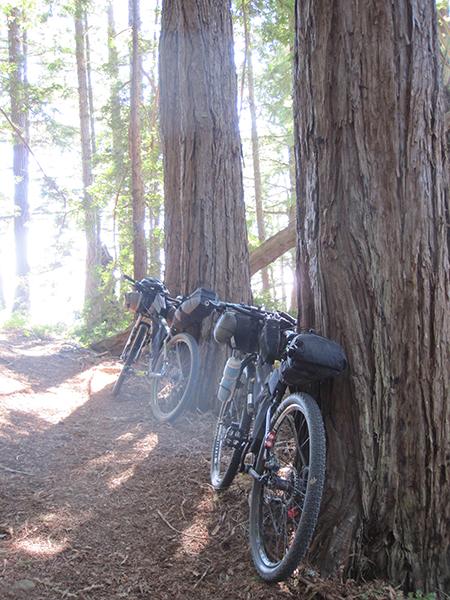 Bay Area Bikepacking 101-img_2765.jpg