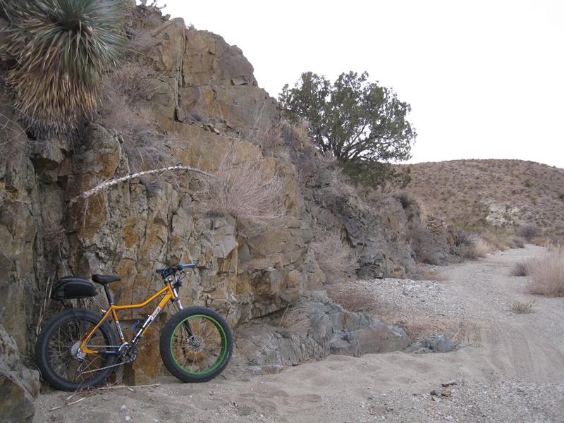 NM Fat Bikes?-img_2777s.jpg