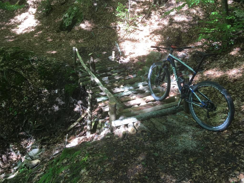 bike +  bridge pics-img_2785.jpg