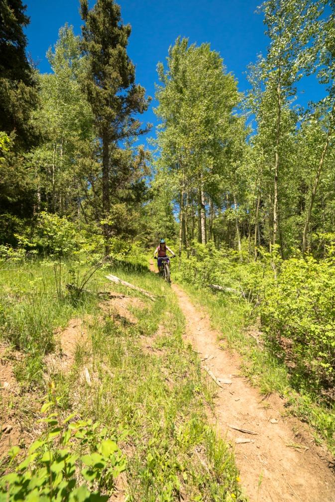 The NM Trail Pix Thread-img_2827.jpg