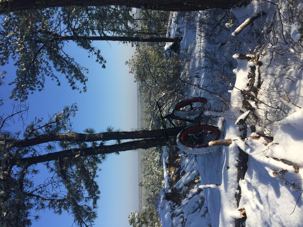 Daily fatbike pic thread-img_2854.jpg