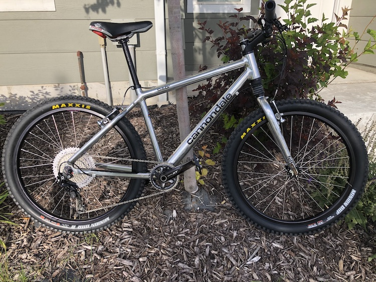 Mendon Cyclesmith is the bomb !!!!-img_30032.jpg