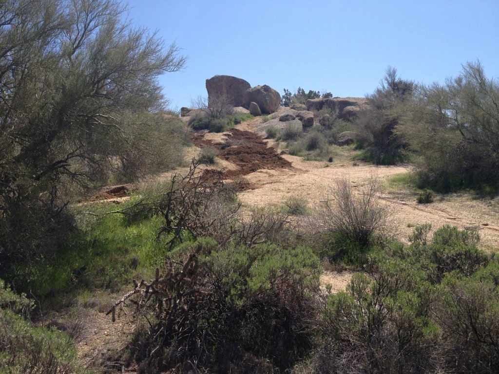 New Trails out at Pima and Dynamite-img_3143.jpg