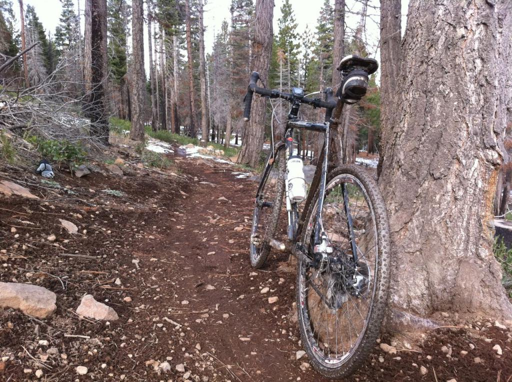 Cross Bikes on Singletrack - Post Your Photos-img_3146.jpg