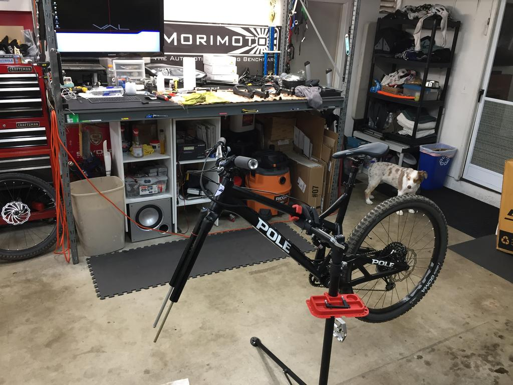 Pole Evolink 150:  Build/Ride Log-img_3157.jpg