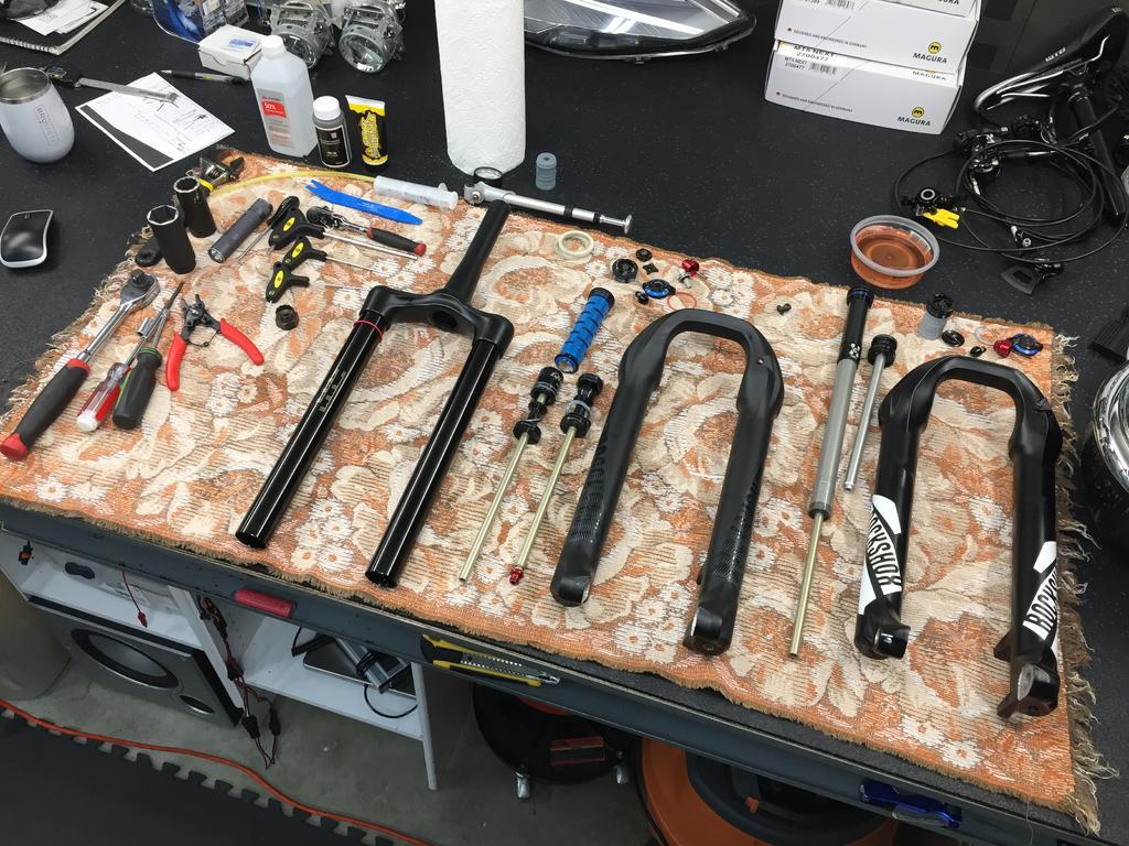 Pole Evolink 150:  Build/Ride Log-img_3159.jpg