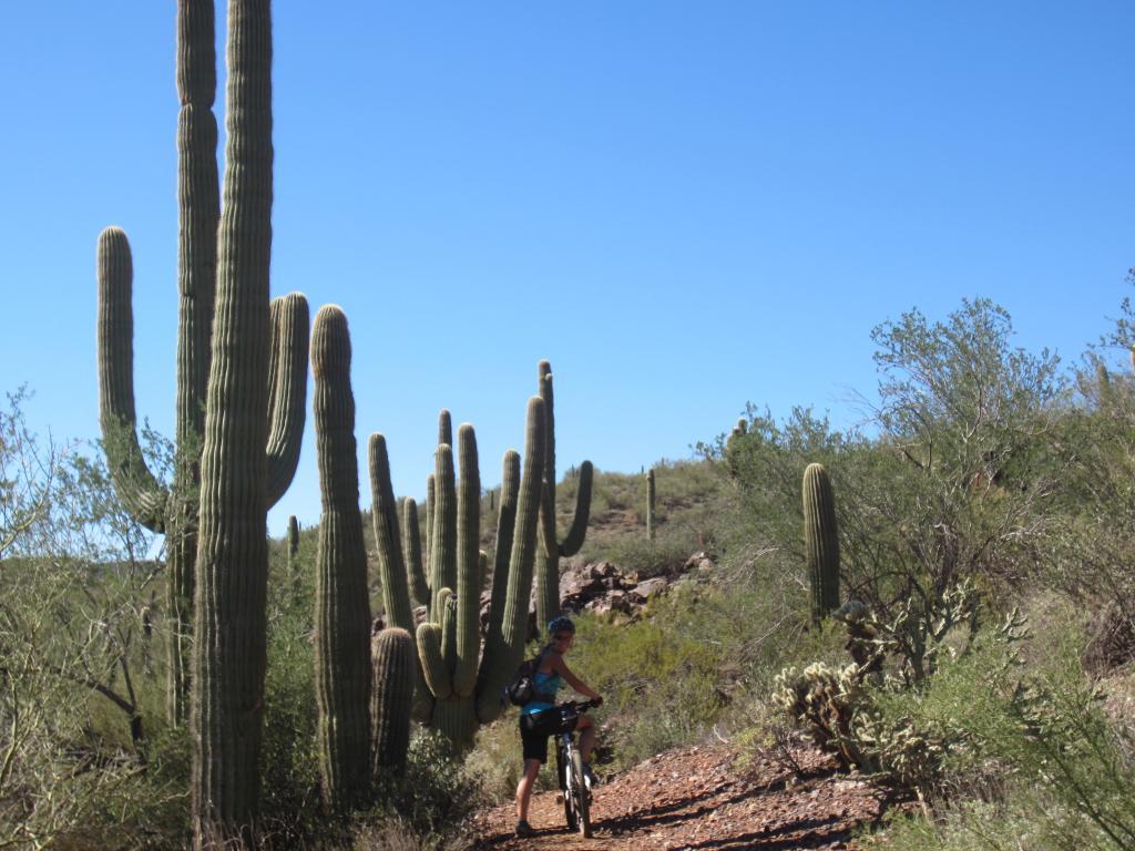 Arizona fall trip-img_3175.jpg