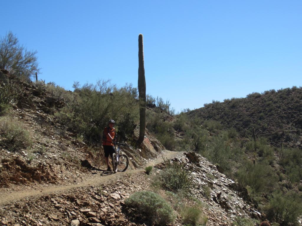Arizona fall trip-img_3192.jpg