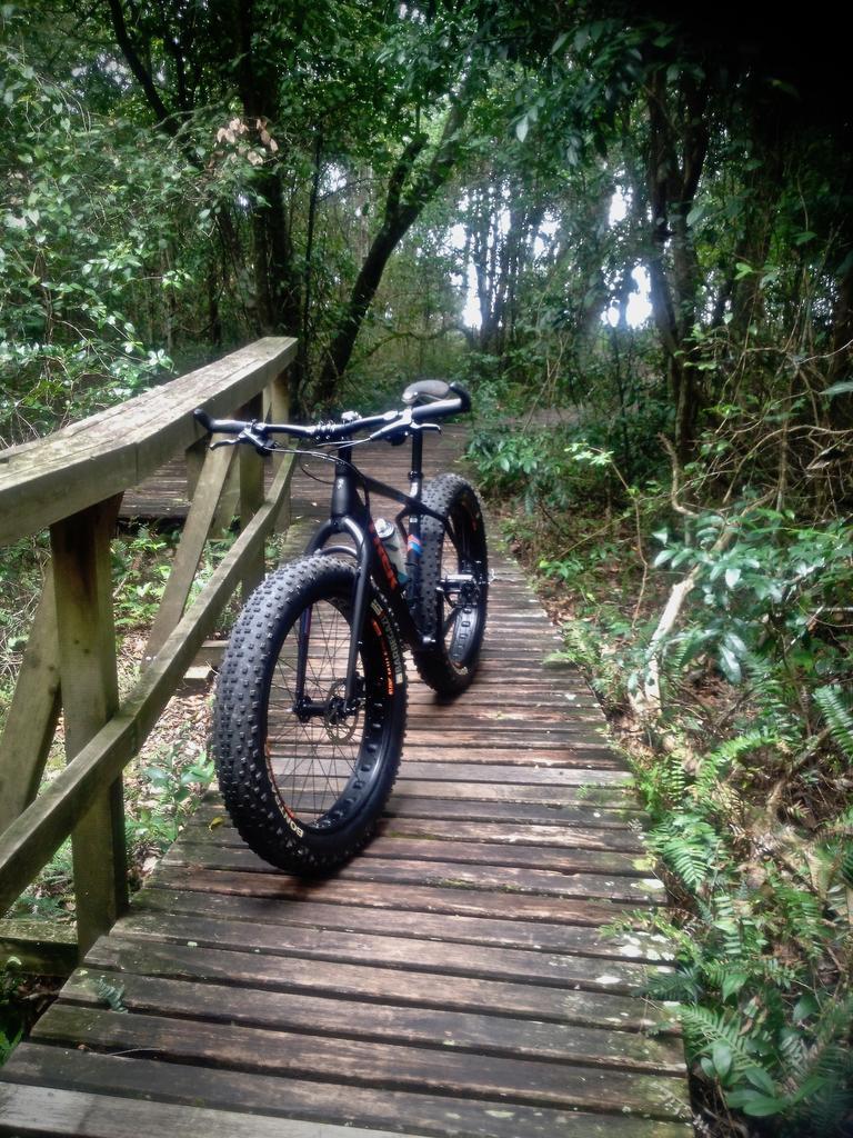 Fat Biking and health-img_3248.jpg