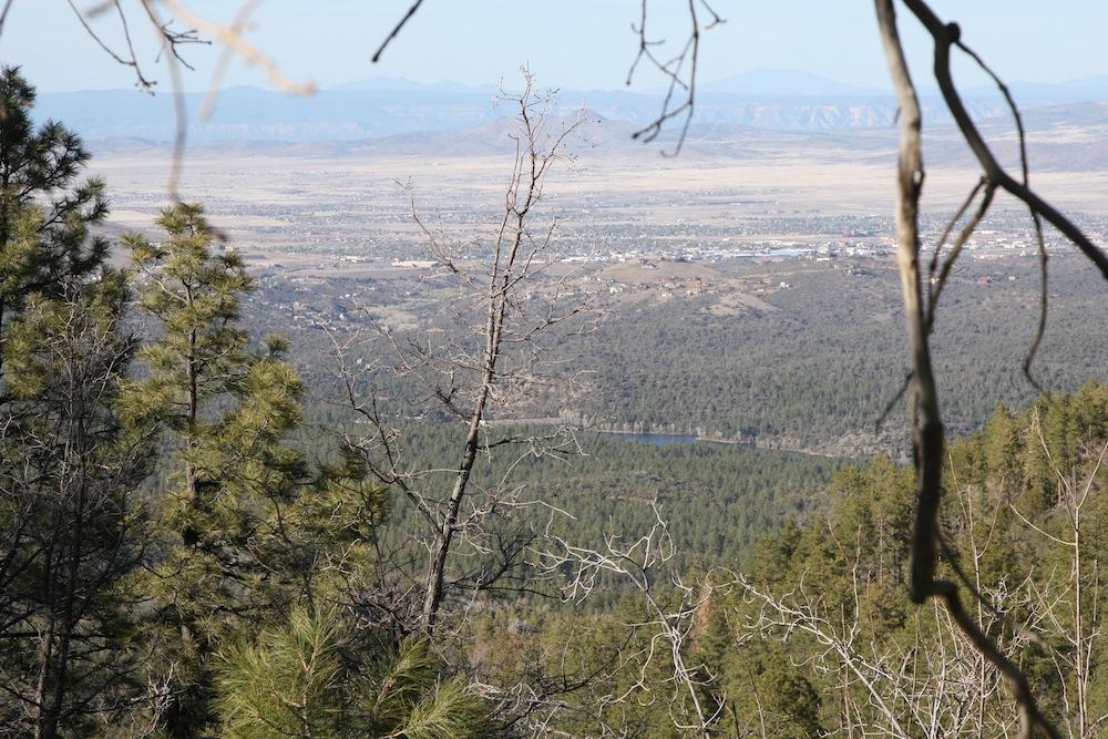 AZ Photo-Friday April 15-img_3248.jpg