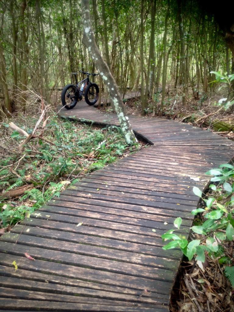 Fat Biking and health-img_3252.jpg