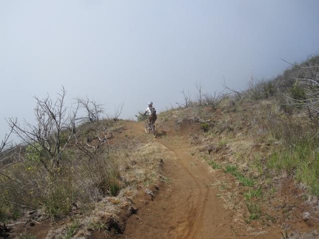 Mtn Biking on Maui-img_3275.jpg