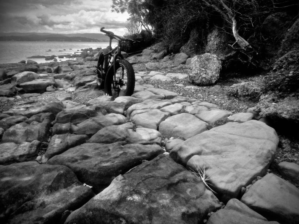Fat Biking and health-img_3295.jpg