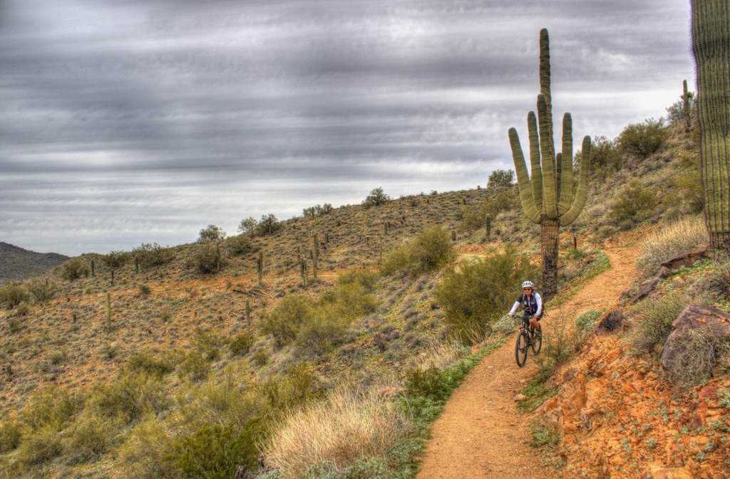 did you ride today?-img_3316_7_8-large-.jpg