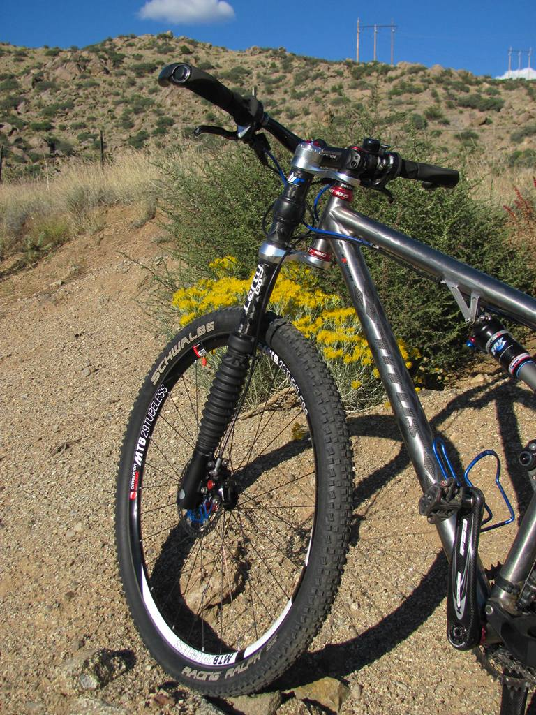 Racer-X 29er versus other DW link (style) bikes ...-img_3332web.jpg