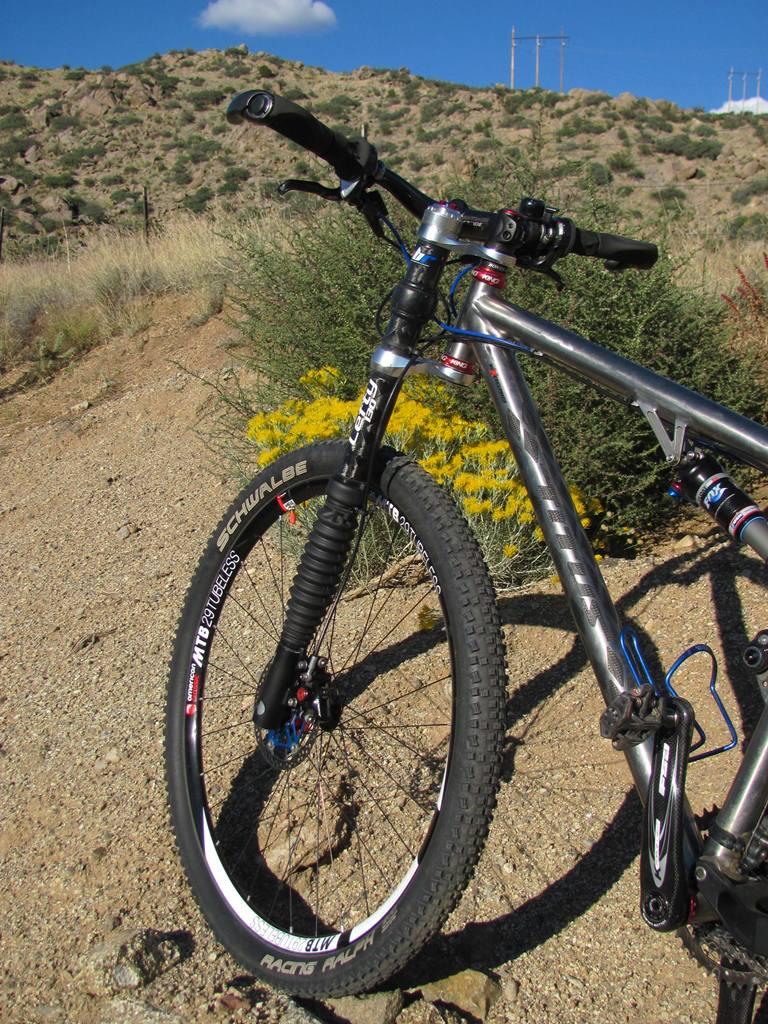 Racer-X 29er versus other DW link (style) bikes ...-img_3332web.jpg