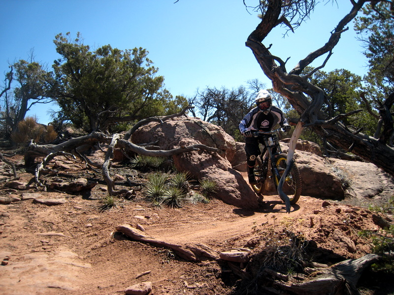 New Moab Conditions 3-1-img_3389.jpg