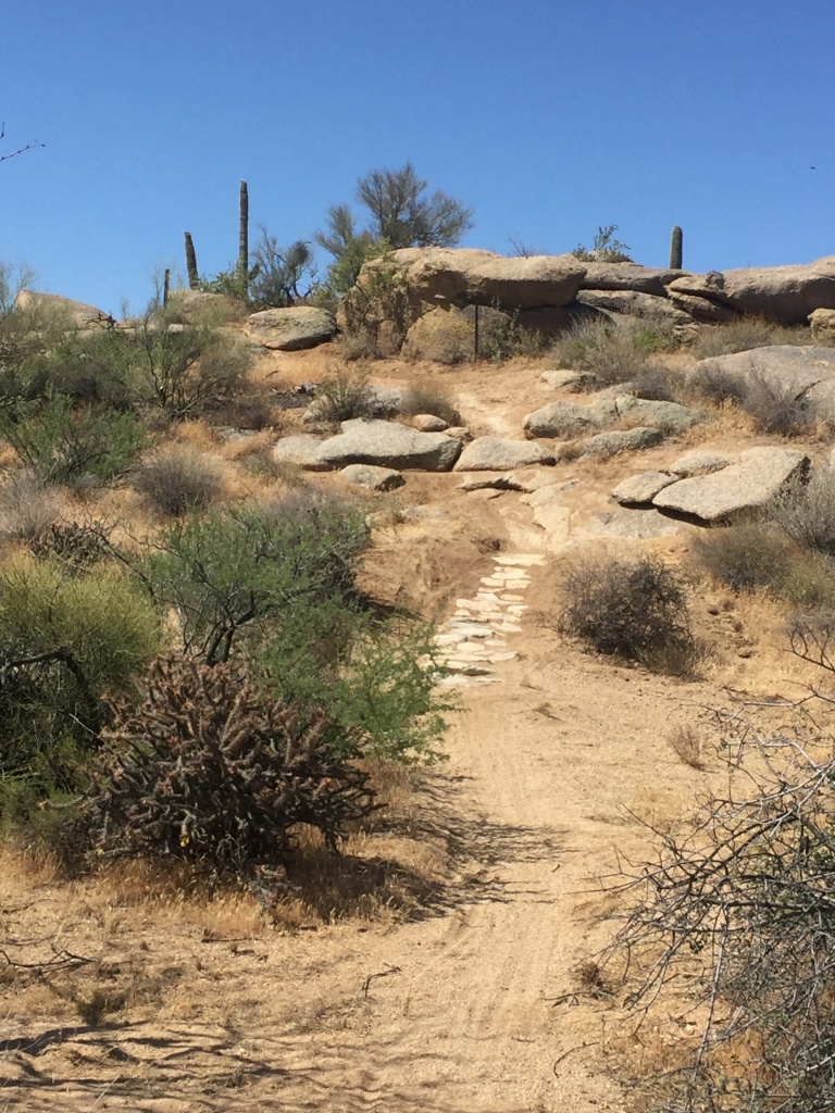 Brown's Ranch technical trail?-img_3411.jpg