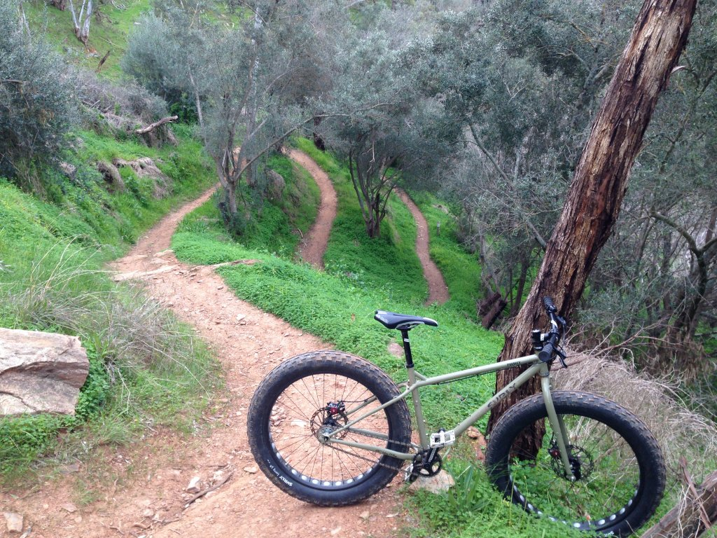 Lets see some SS fatbikes!-img_3411.jpg
