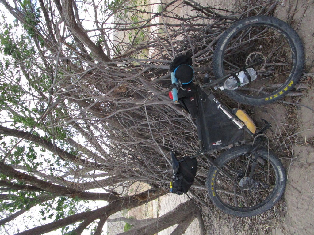 Post pics of your Surly!!!-img_3447.jpg