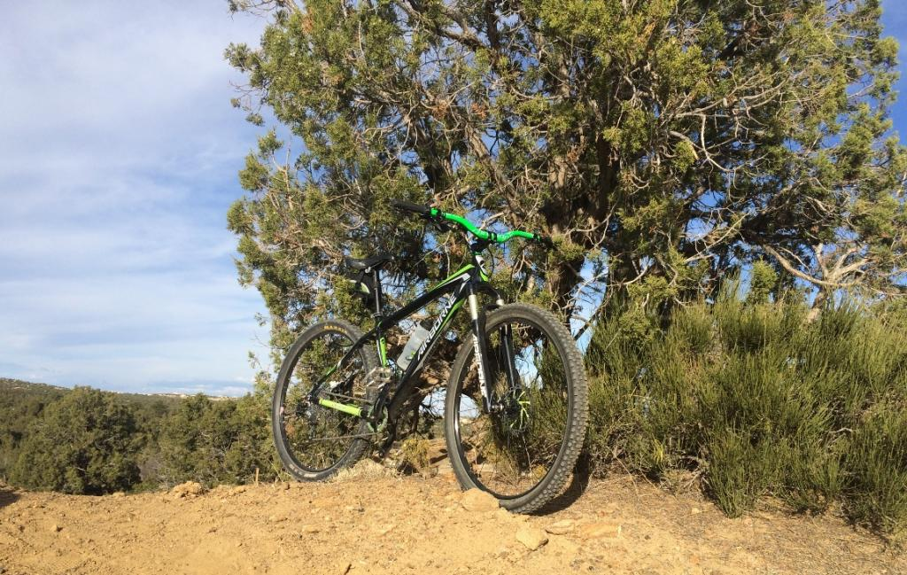 Post Your Modified Airborne Bikes-img_3452.jpg