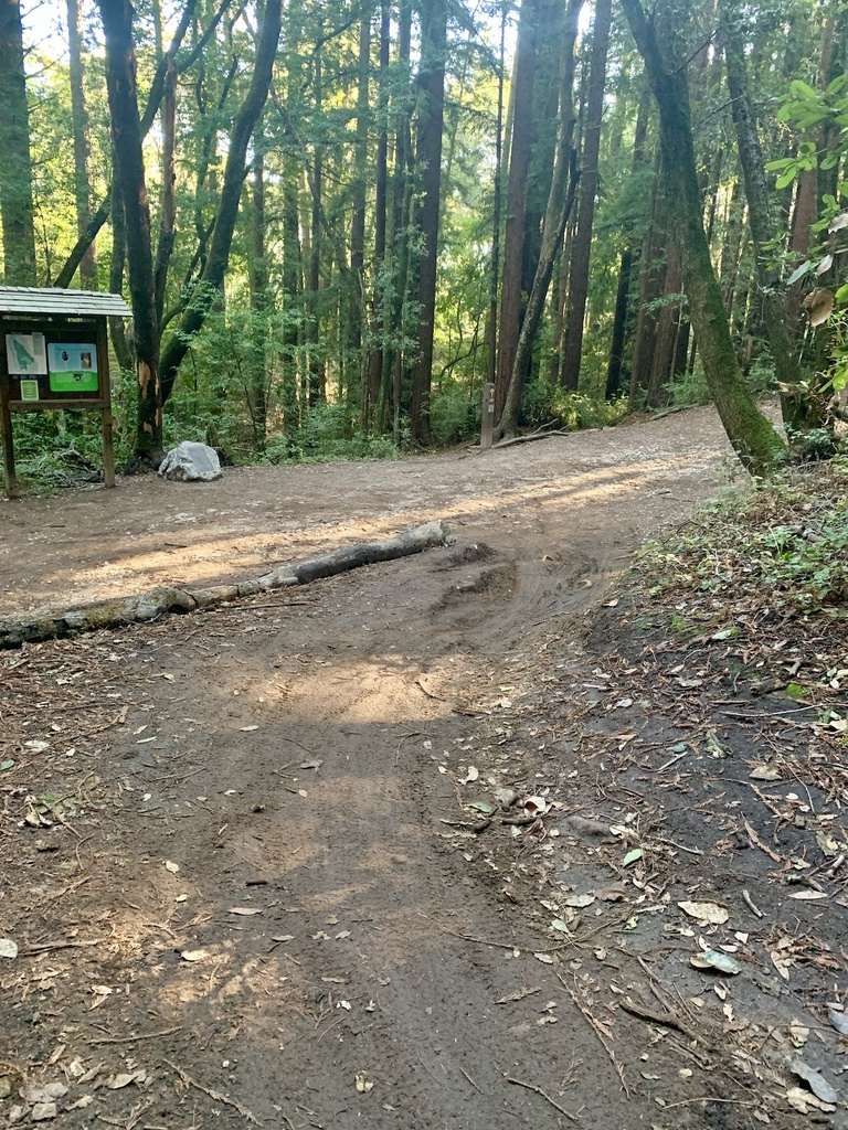 Jan 21-24, 2019 Weekly Ride and Trail Report-img_3457.jpg