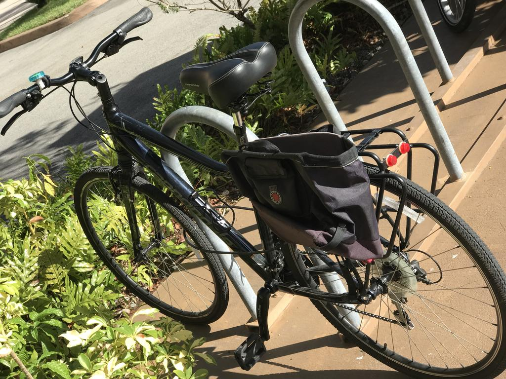 Fat Biking and health-img_3517.jpg