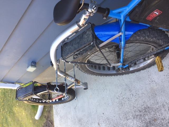 bob trailer and fat tires-img_3565-1.jpg
