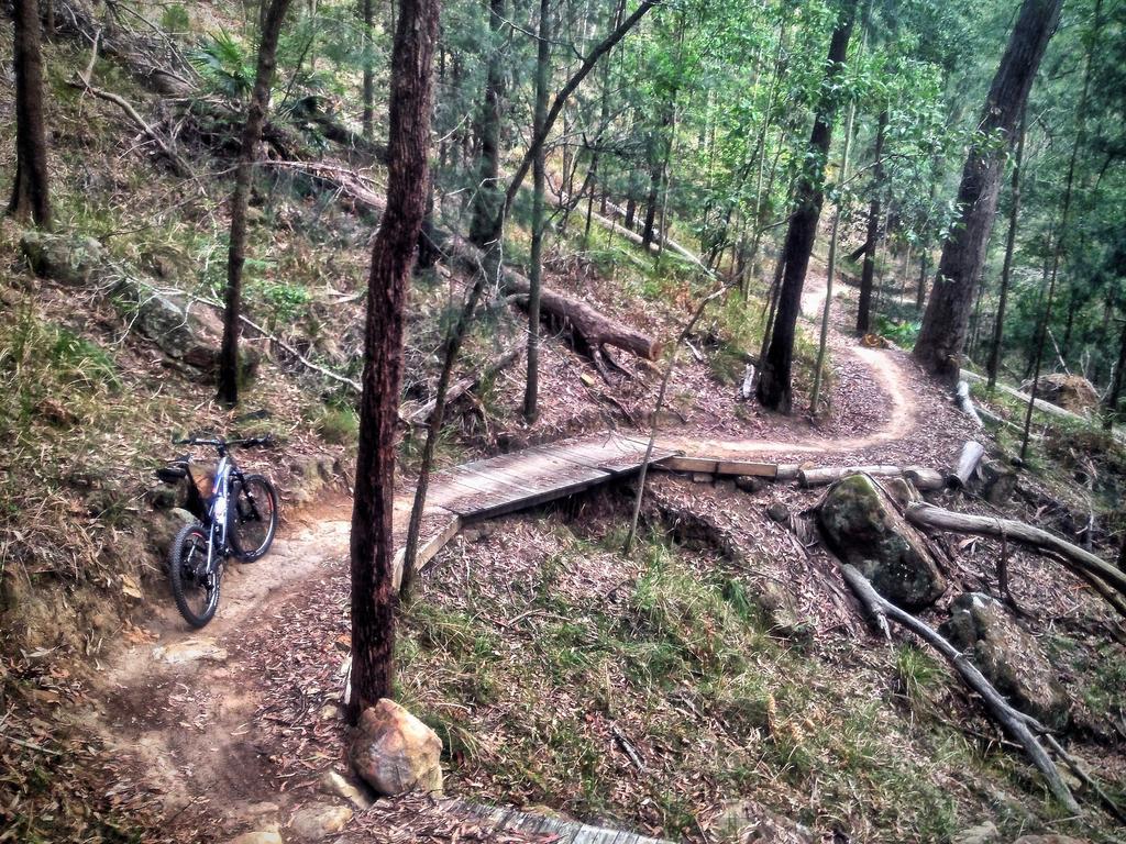 Fat Biking and health-img_3585.jpg