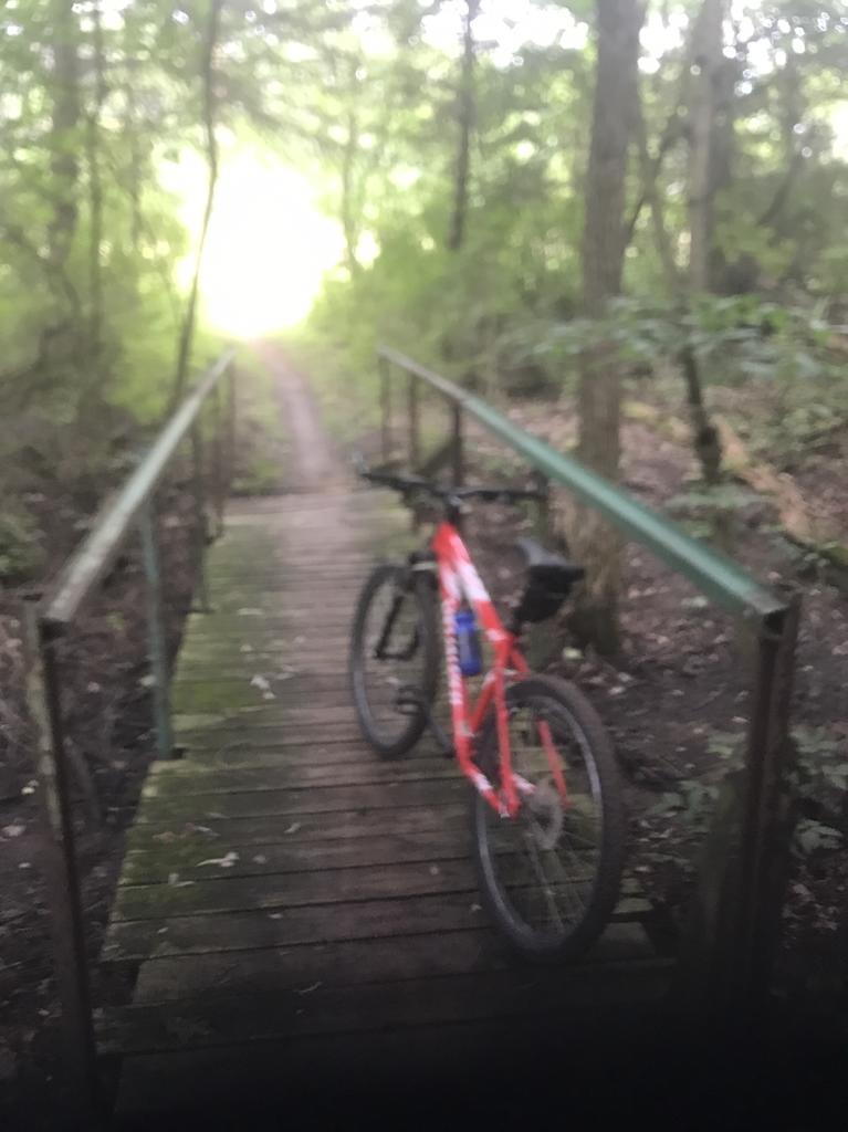 bike +  bridge pics-img_3623.jpg