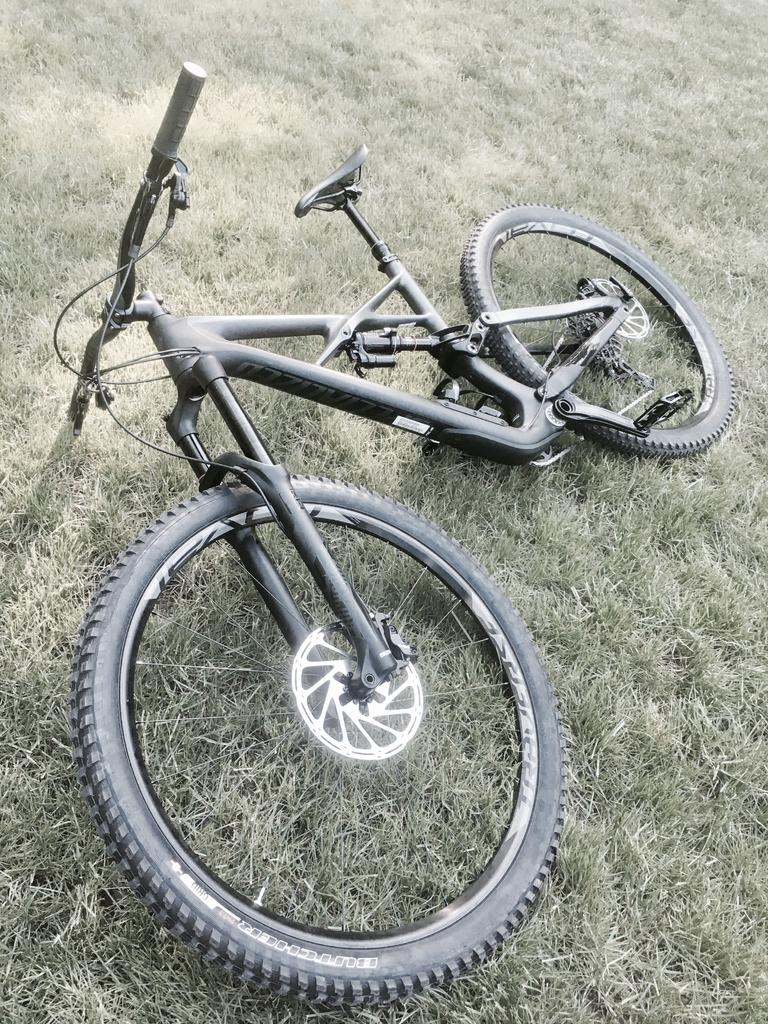 A dedicated thread to show off your Specialized bike-img_3641.jpg