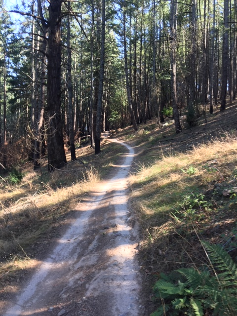 Oct 19-21, 2018 The Weekend Ride and Trail Conditions Report-img_3647.jpg