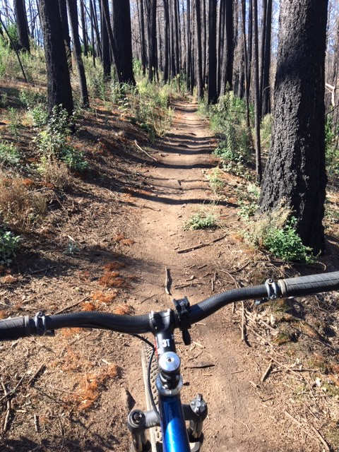 Oct 19-21, 2018 The Weekend Ride and Trail Conditions Report-img_3655.jpg