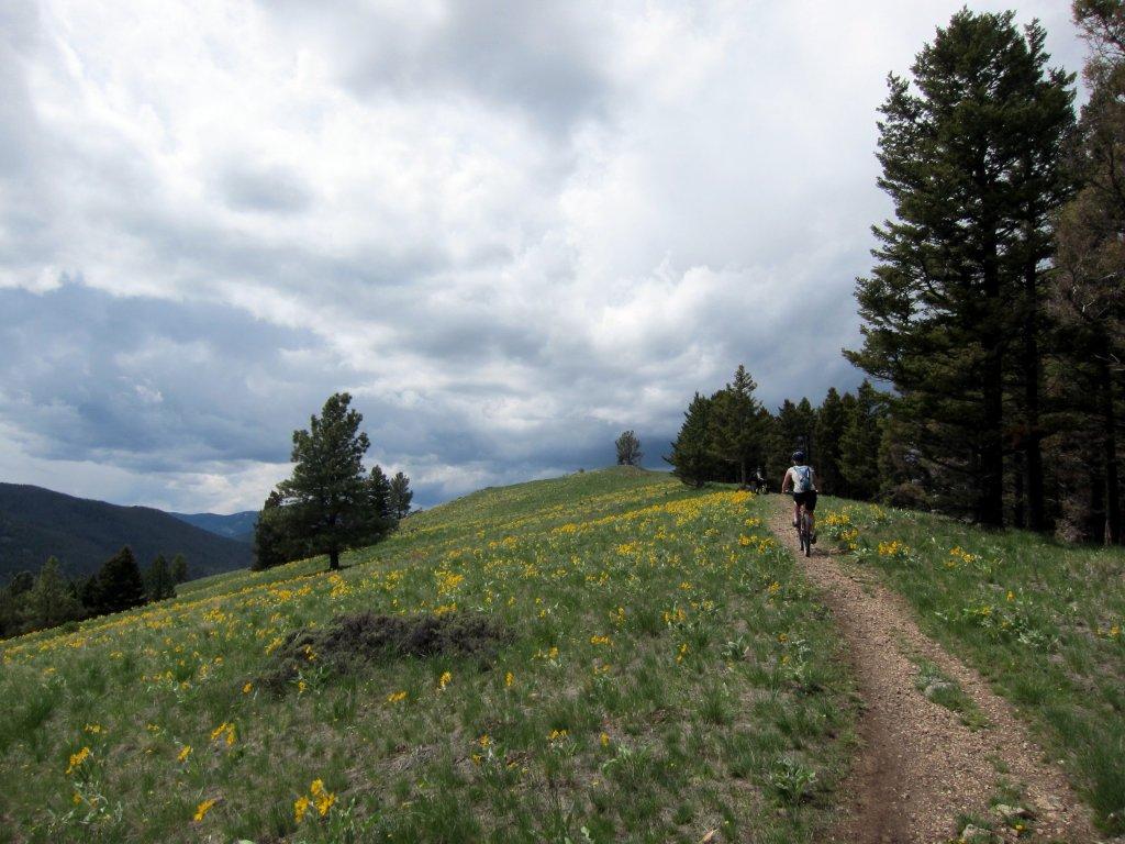 Helena, Montana Info-img_3657.jpg