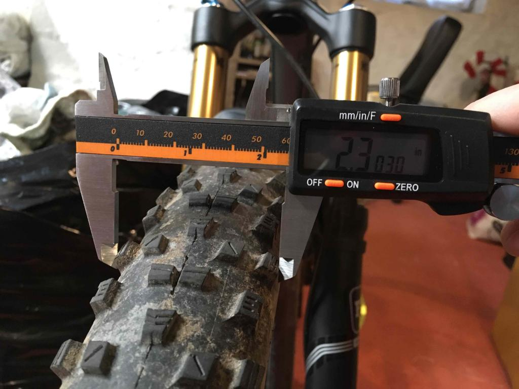 Anyone ran a Maxxis Forecaster?-img_3684.jpg