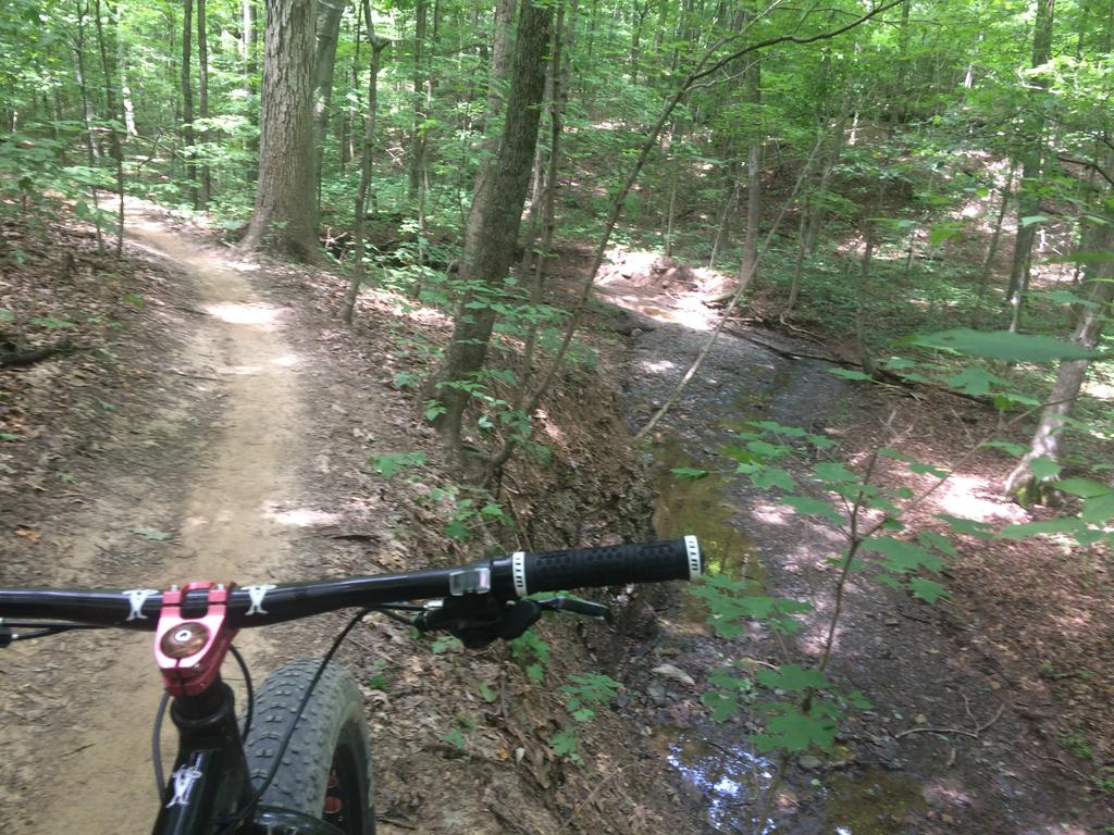 Fat Biking and health-img_3700.jpg