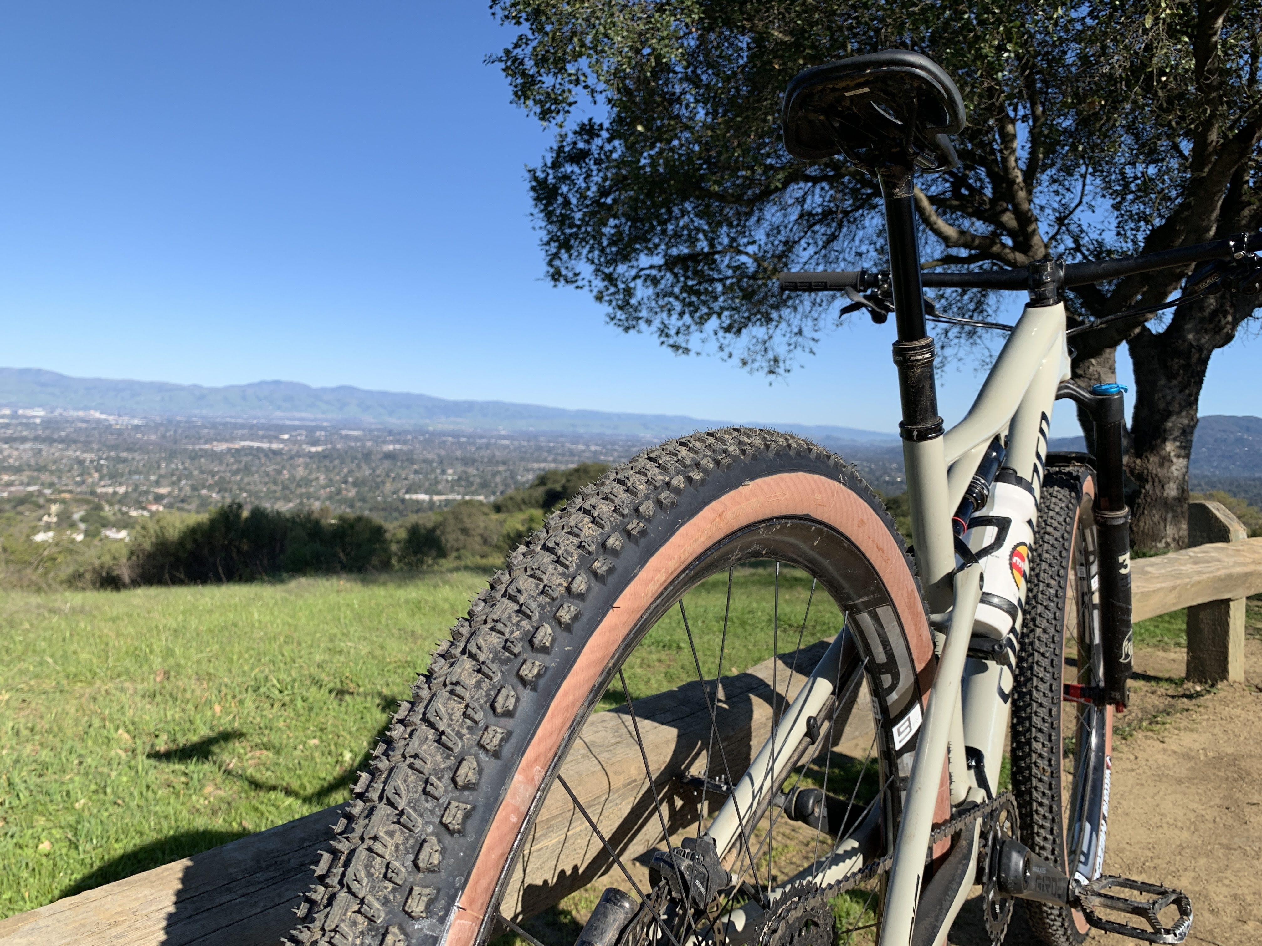 2 X Vittoria Barzo Bicycle Bike Tyre MTB 29/'/'x 2.35 TNT Tubeless folding tyres