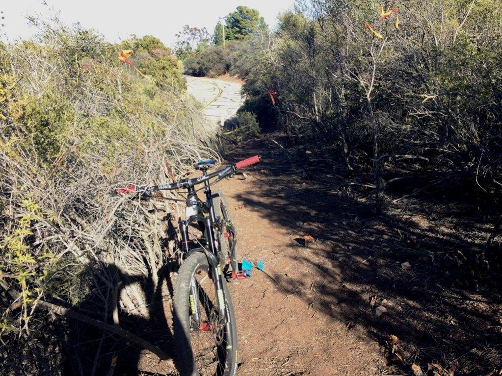 Closure at Encinal Canyon/Backbone trail-img_3765.jpg